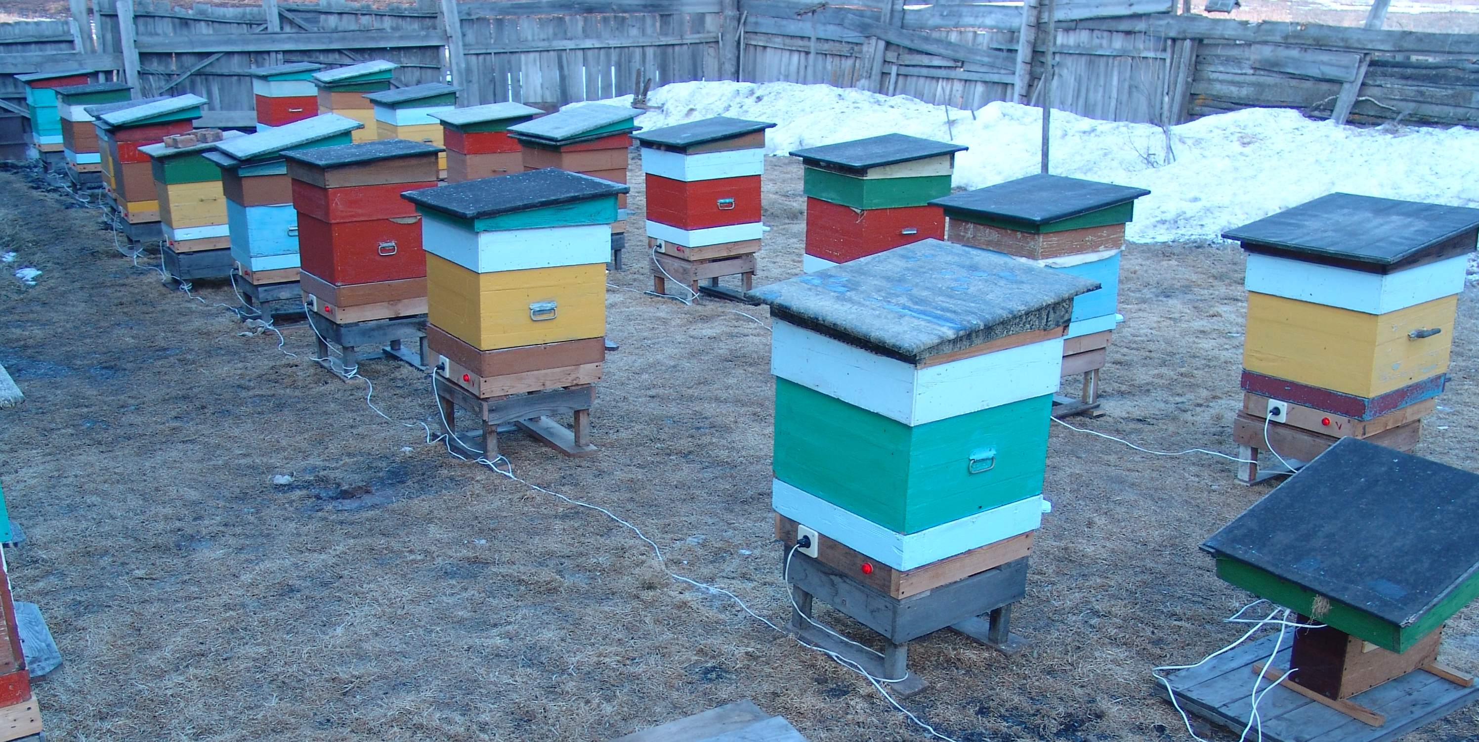 Пчеловод все своими руками